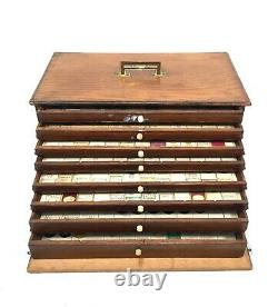 Antique Large Microscope Slide Set in Wooden Oak Collectors Box / Chest Drawers